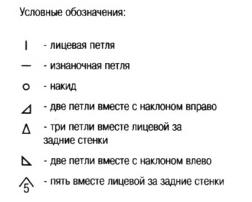 shal-roz2[1]